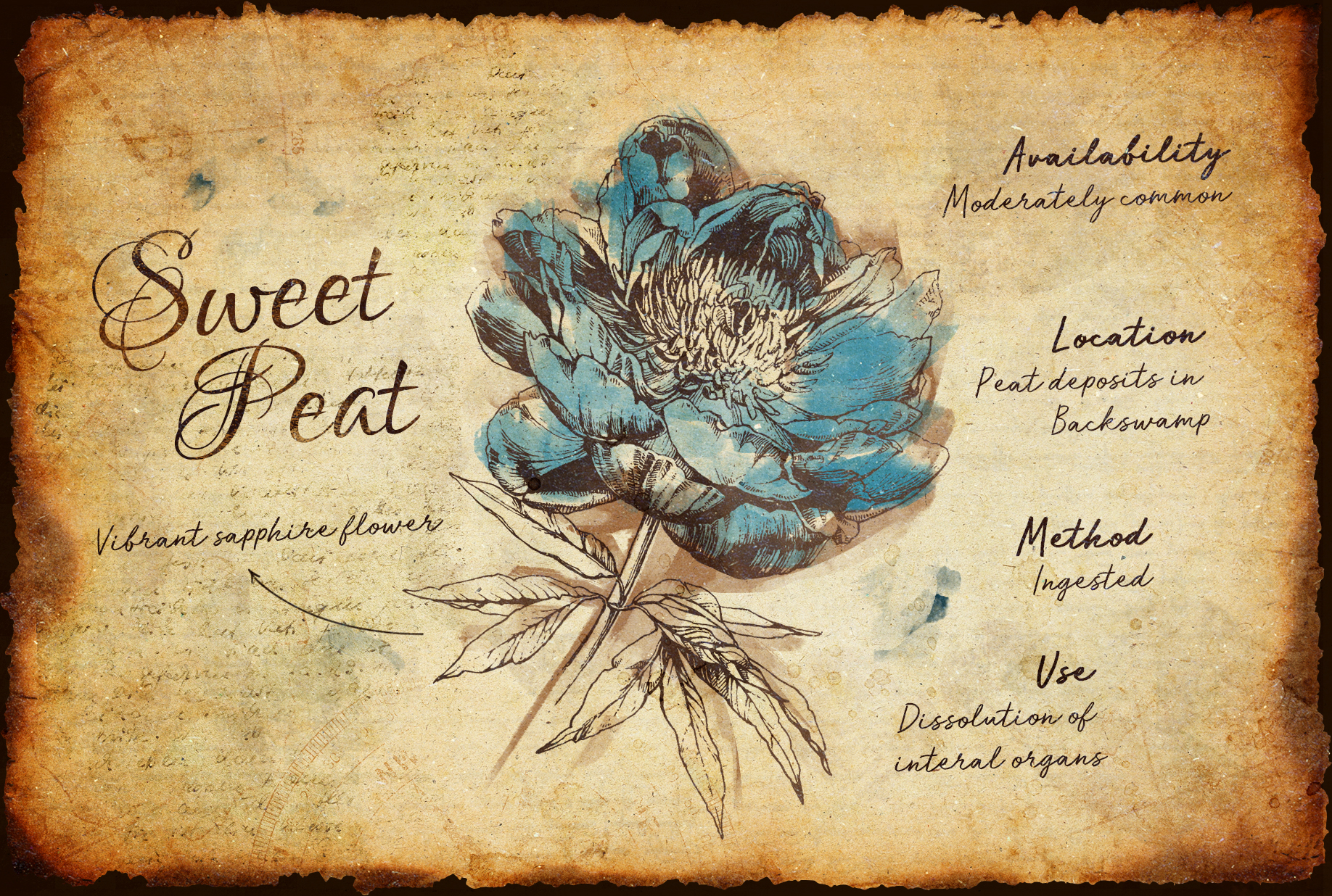 SweetPeat